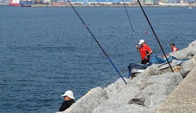 El puerto deportivo de Getxo acogerá el Campeonato de Euskadi Corcheo Mar 2014