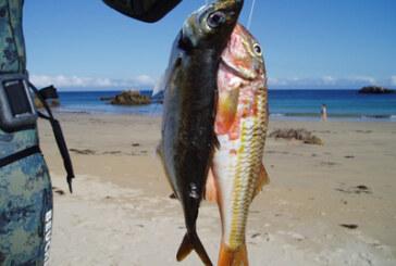Pesca submarina para cazadores y pescadores