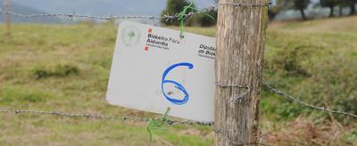 Bizkaia abre 1424 puestos de pase
