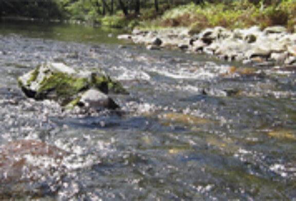 Responsables de 'Guratrans' comparten experiencias para mejorar la gestión de los ríos
