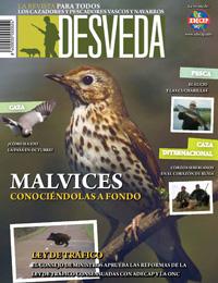 Todas las claves de la temporada general en nuestra revista Desveda/Adecap