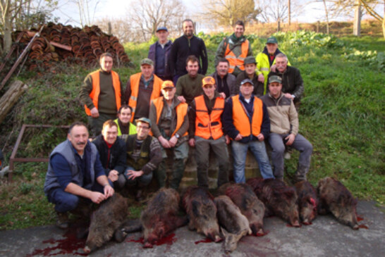 Más cazadores, pero menos jabalíes y corzos
