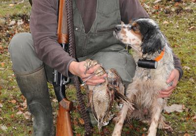 Adelantos  tecnológicos que posponen más la caza