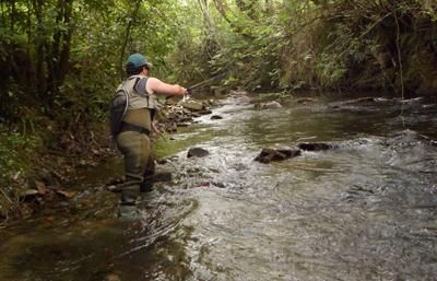 Gipuzkoa refuerza la protección de su fauna fluvial