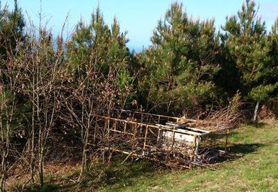 Vuelven a aparecer puestos de caza con destrozos en el monte Jaizkibel