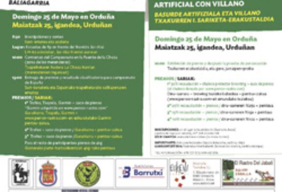 Orduña se convertirá este domingo en el centro de Euskadi del perro de rastro
