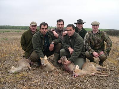 Ciervos exóticos en Inglaterra