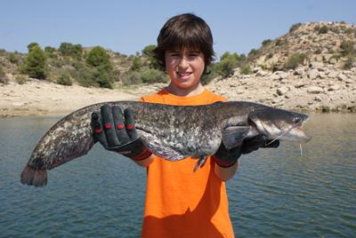 Las especies alóctonas y el futuro de la pesca