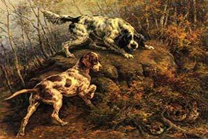 FOTO DEL DÍA: La caza también es Arte