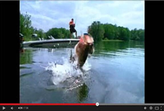 Pesca con Rapala