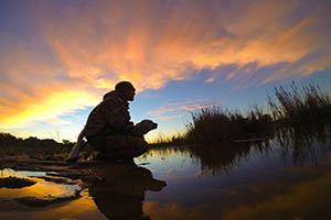 FOTO DEL DÍA: Amanecer de caza. Acuáticas