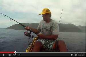 Tiburón intenta robar la captura del pescador