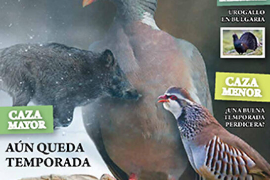 La revista Desveda de enero, con la prórroga de la torcaz como protagonista