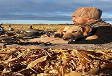 FOTO DEL DÍA: El mejor amigo del cazador