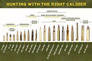 Diferentes tipos de balas