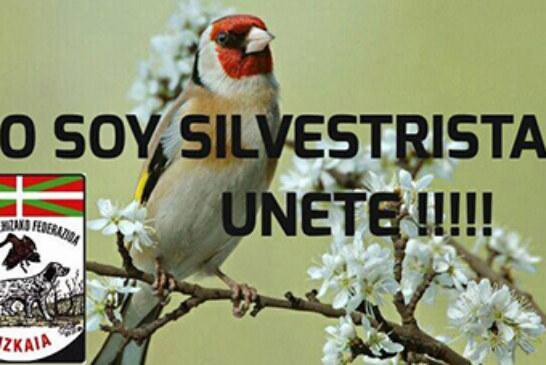 Ante la posible prohibición de capturar aves fringílidas en Bizkaia