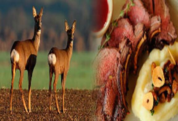 FOTO DEL DÍA: Carne de caza