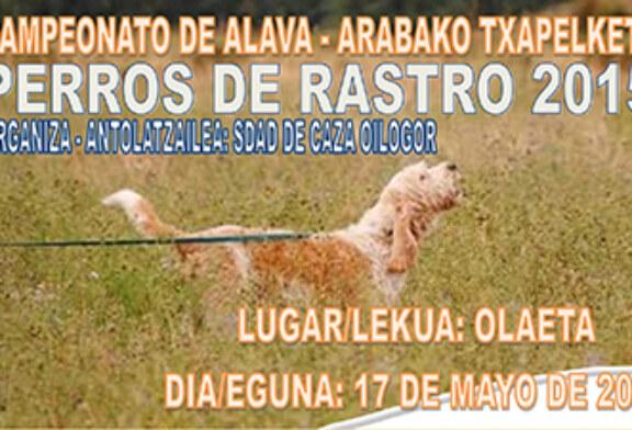 Campeonato de Álava de Perros de Rastro