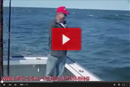 Recopilación de accidentes de pesca