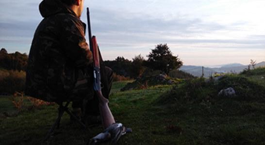 El Ayuntamiento de Palma prohíbe cazar, por primera vez, en las zonas libres