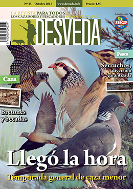 La apertura de la general marca la revista Desveda de octubre