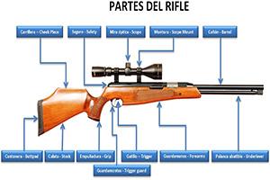 Partes de un rifle