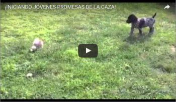 ¡INICIANDO JÓVENES PROMESAS DE LA CAZA!