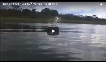 ESPECTACULAR IMÁGENES DE PESCA