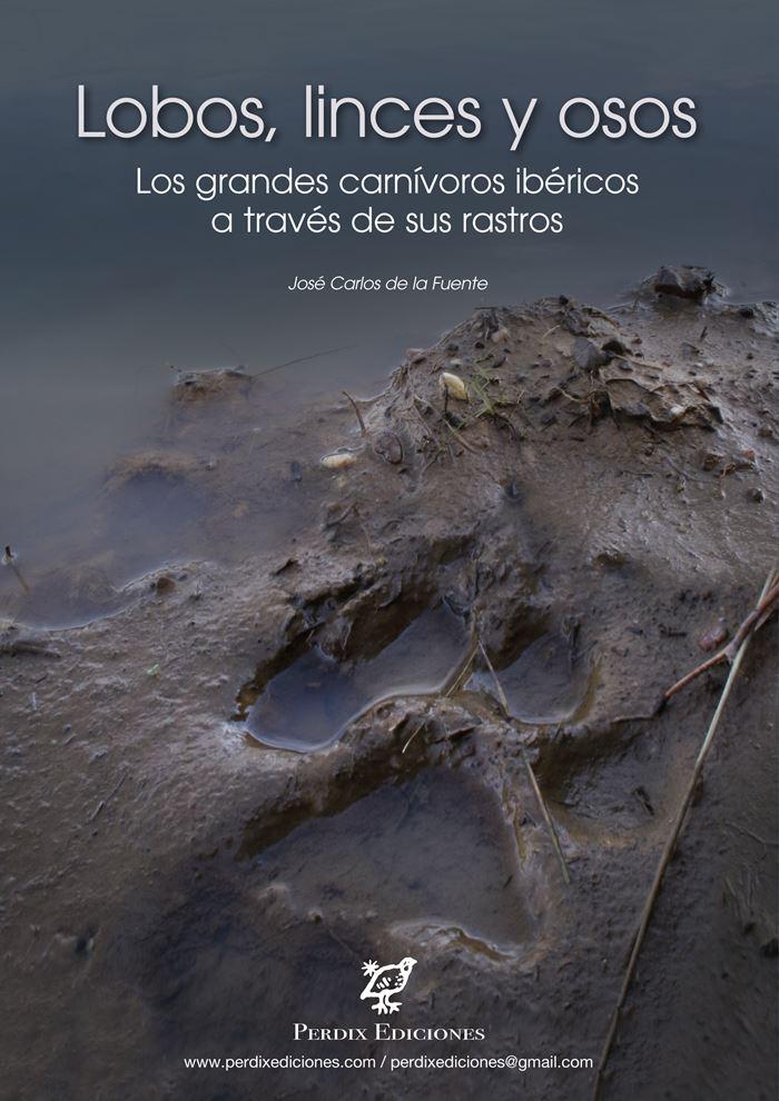 Lobos, linces y osos: los grandes carnívoros ibéricos a través de sus rastros