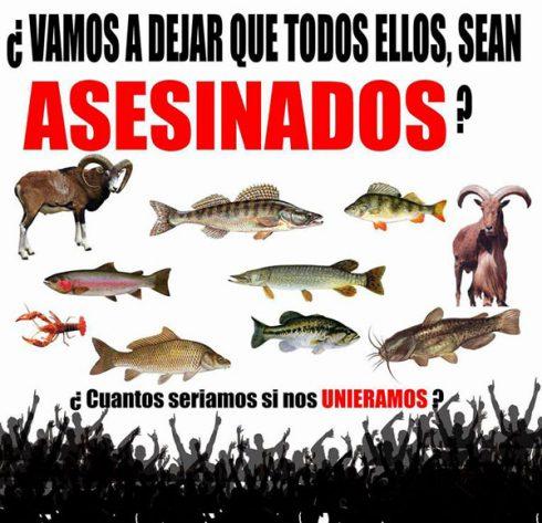 EL CONGRESO PIDE AL GOBIERNO QUE PERMITA LA PESCA Y LA CAZA DE ALGUNAS ESPECIES INVASORAS