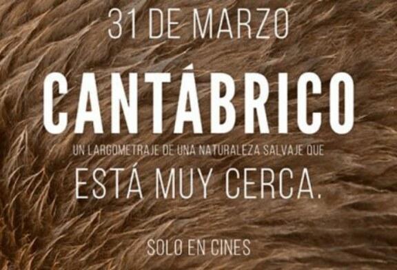Preestreno en Cantabria: «Cantábrico. Los dominios del oso pardo»