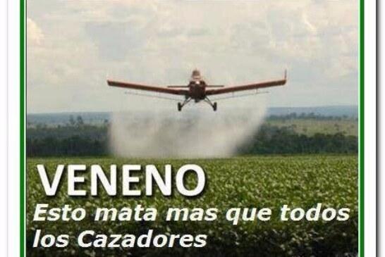 Naciones Unidas arremete contra la industria de los pesticidas y sus efectos sobre la fauna y las personas