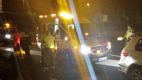 Una mujer y dos niñas heridas tras chocar de noche contra un jabalí en Murieta (Navarra)