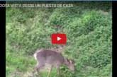 PRECIOSA VISTA DESDE UN PUESTO DE CAZA