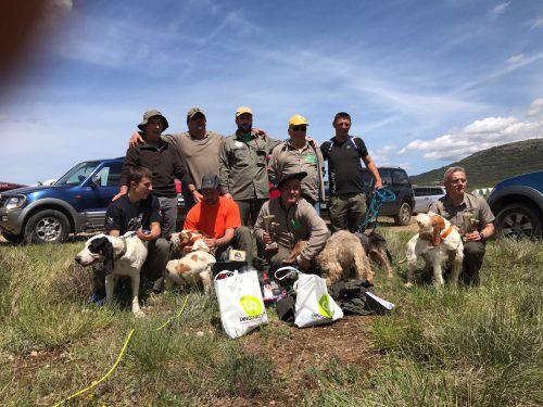 Campeonato alava perros de rastro 7-5-17 (1)