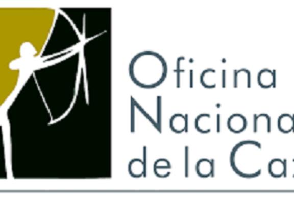 LA OFICINA NACIONAL DE CAZA PIDE QUE SE ACLARE CUANTO ANTES LA MUERTE DE VARIOS PERROS EN UN BARRANCO CANARIO