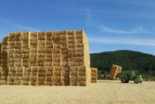 ADECANA informa sobre la recolección del cereal y la recogida de la paja para minimizar su impacto ambiental