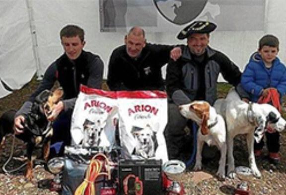 Navarra mantiene el arte de la traílla sobre jabalíes salvajes