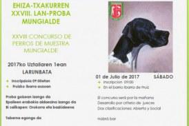 Próximo sábado: XXVIII Concurso de perros de muestra Mungialde