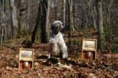 Proyecto Becada: una iniciativa encaminada al sostenimiento de la especie para garantizar su futuro