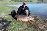 Asociaciones de caza y pesca defienden la captura de especies invasoras por su valor cinegético o piscícola