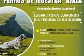 """Alava: 22 de junio """"II Concurso de perros de muestra"""" en Aiala"""