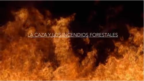 Fundación Artemisan reivindica la actividad cinegética como clave en la prevención de incendios