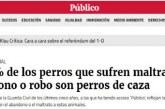 Madrid: La RFEC exige a Publico.es que deje de acusar al sector cinegético de maltratar y abandonar perros
