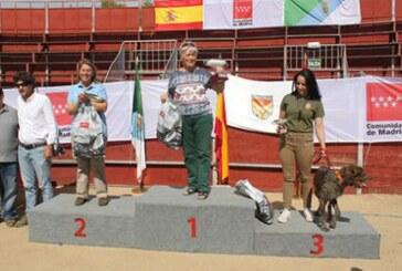 Buena participación del equipo de Euskadi en el campeonato de España de San Huberto
