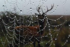 Foto del Dia: Feliz equinoccio de otoño