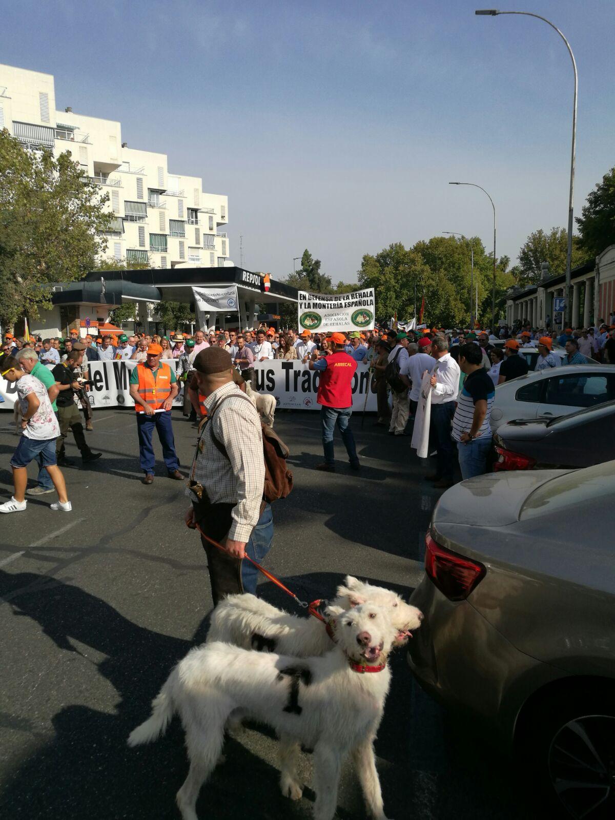 manifestacion cordoba (5)