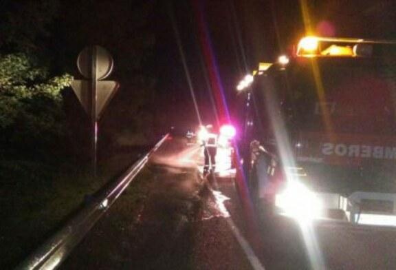 Navarra: Una patrulla de la Policía Foral sufre un accidente con un jabalí en la autovía A-10