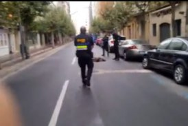 La Rioja: : La policía municipal dispara contra otro jabalí en el parque del Iregua de Logroño