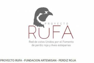 Proyecto RUFA: Objetivo, la recuperación de la Perdiz y otras aves esteparias en España